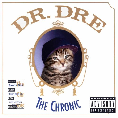 Classic album covers reimagined with kittens. This....is...amazing.