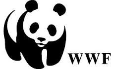 Latest Sustainable jobs: WWF is looking for a National Park Manager for the Salonga National Park in Congo, Africa.