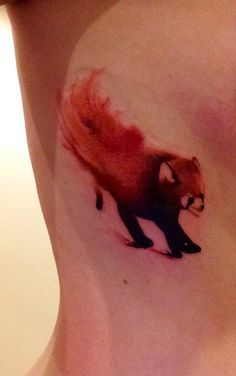 ... on Pinterest | Peacock Feather Tattoo Tattoos and body art and Pandas