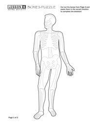free bones skeletal system puzzle worksheet full bones lesson more human body and body. Black Bedroom Furniture Sets. Home Design Ideas