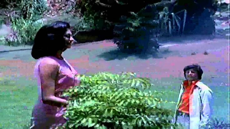 Chalte Chalte Mere Yeh Geet [Full Video Song] (HD) With Lyrics - Chalte ...