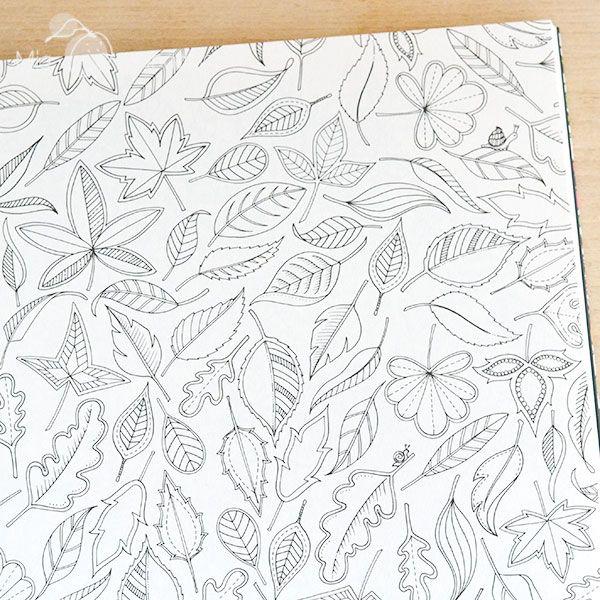 Libro Para Colorear El Jardin Secreto De Johanna Basford Encuntralo En Mia Mandarina GabrielColouring InSketchesThe Secret GardenColoring BooksSecret