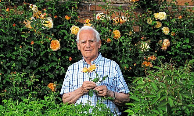 David Austin is revered as one of the heroes of British horticulture. The roses he breeds are correctly called 'English Roses', but as everyone calls them 'David Austin Roses' his name is recognised by gardeners all over the world.