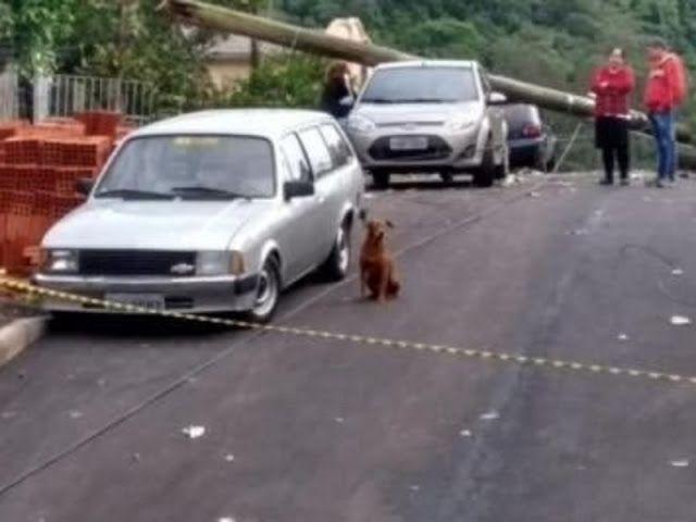 Uma mulher de 28 anos morreu na manhã desta segunda-feira (2) após ser decapitada por um fio de energia em Sapiranga, no Vale do Sinos, ...