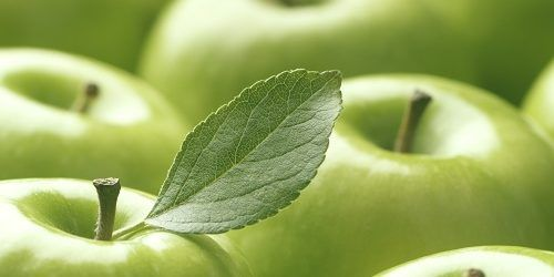 The Skin Care Benefits Of Pyrus Malus Fruit Extract Skin Care Benefits Skin Health Skin