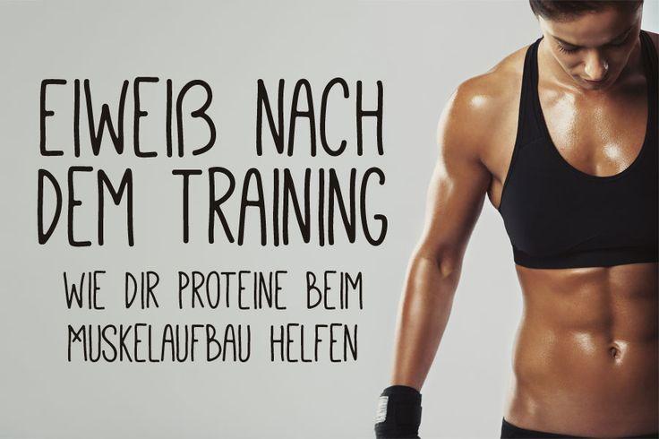Warum Eiweiß nach dem Training wichtig ist, wie viel Eiweiß du benötigst und warum du Proteine über den Tag verteilt zu dir nehmen solltest.