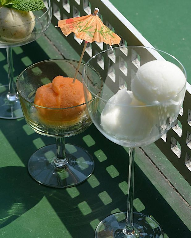 Sorbet Pastis Recipe Desserts Sorbet Tableware