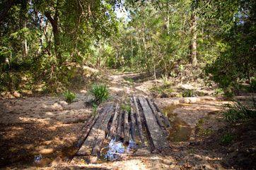 Estuary Creek rural land for sale - Yamba NSW, Illuka NSW, Grafton NSW • Nature Conservation Trust of NSW