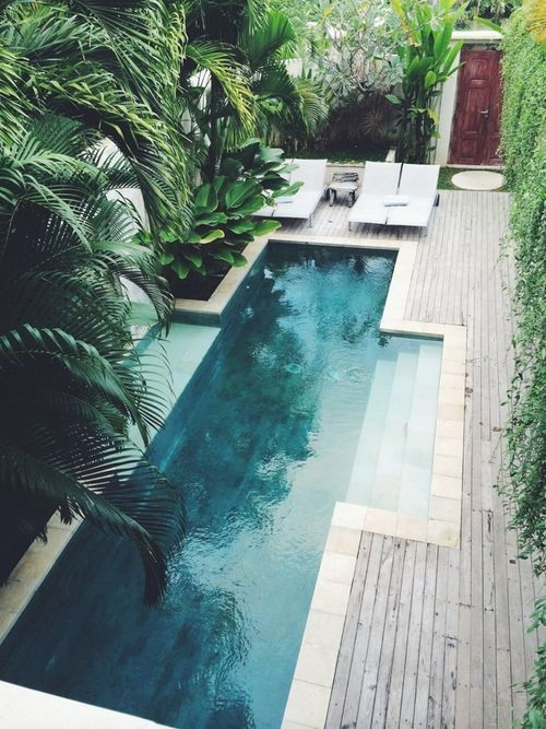 Green pool + stone border and wooden deck