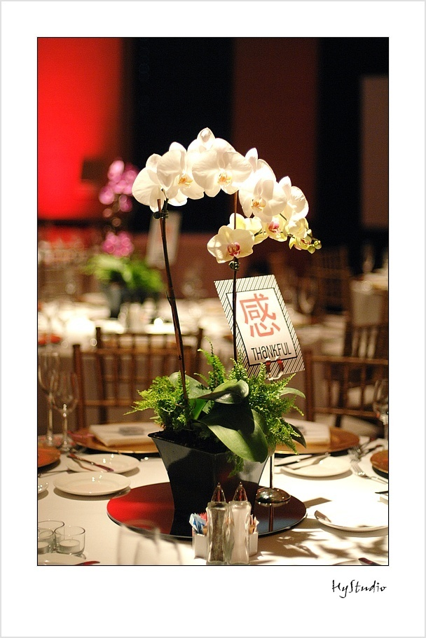 Simple orchid centerpiece june wedding flowers pinterest