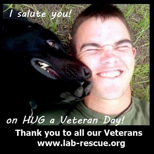 Hug a veteran today, or a lab! www.lab-rescue.com