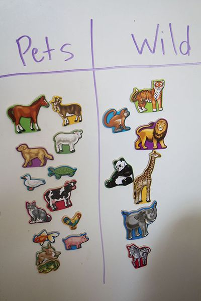 A is for Animal Learning and Sorting #kids #activity @Shannon Bellanca Kendall McMahon Lump Toys