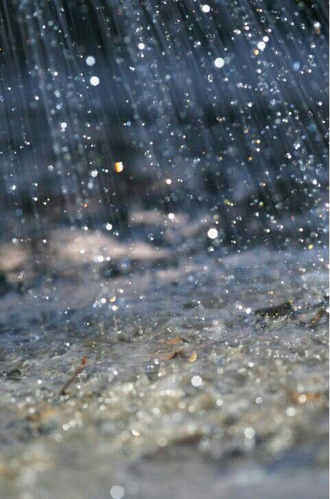 ".27.02.2017 "" petites perles de pluie """