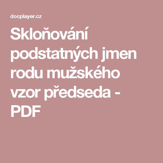 Skloňování podstatných jmen rodu mužského vzor předseda - PDF