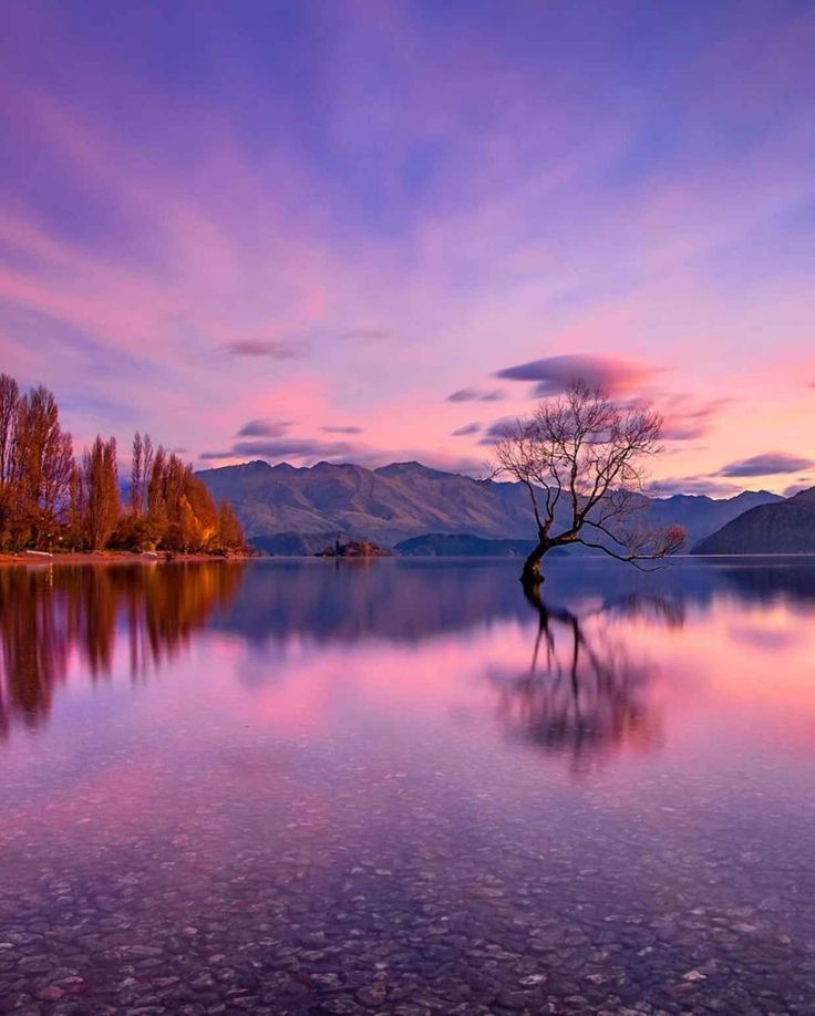 The Best Images About Wallpapers On Pinterest - This couple photograph new zealands most breathtaking locations