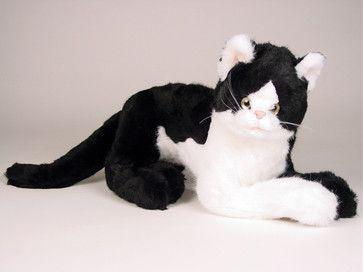 """Creme Puff"" Black & White Cat"