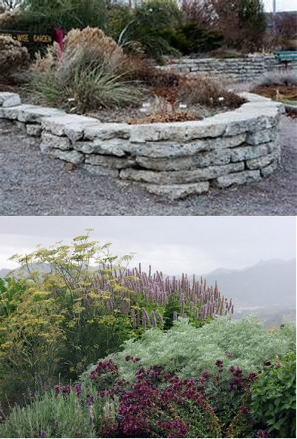 These Smashing Backyard Ideas Are Hot And Happening: 25+ Best Ideas About Zero Scape On Pinterest