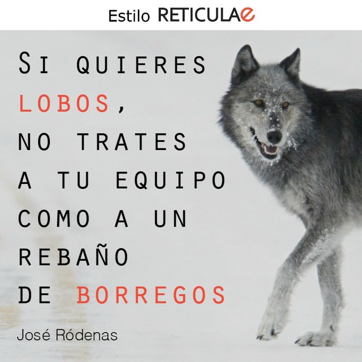 Si quieres lobos, no trates a tu equipo como a un rebaño de borregos. José Ródenas #frases #liderazgo