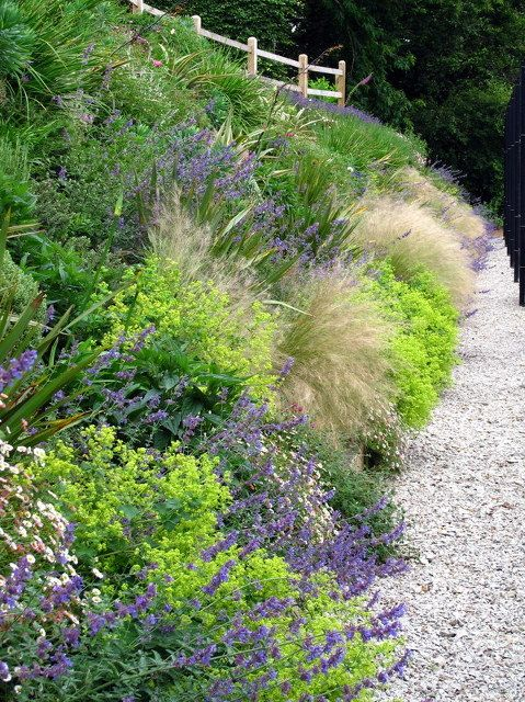 Grasses and perennials smother a hot sunny bank le beau for Sunny landscape designs