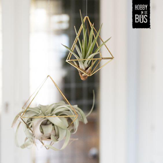 Hobby in de Bus | DIY-pakket geometrische hangers. Met dit DIY-pakket maak je met o.a. messing pijpjes en nylon draad twee geometrische hangers. Deze kun je als vorm ophangen maar zijn ook erg leuk om te vullen met bijvoorbeeld een luchtplantje.