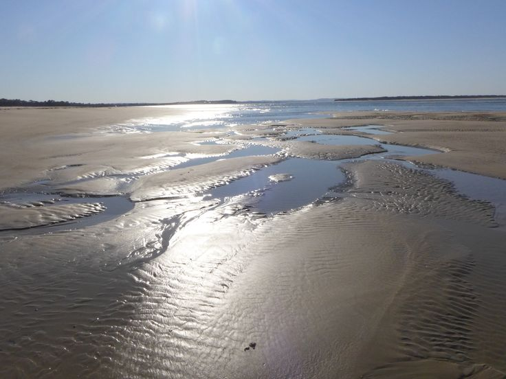 Low tide spring sun