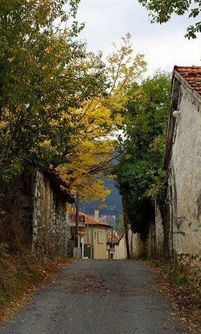 autumn.. Vιtina (Mountainous Arcadia), Greece