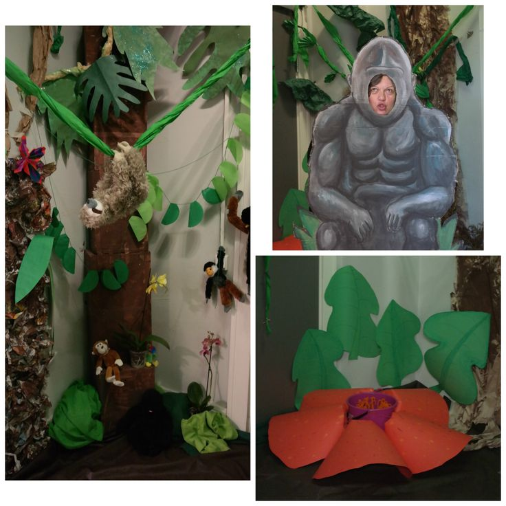 Rainforest room! For Rainforest week we transformed the small entry hall into our cloakroom into a fantastic mini rainforest! Our class again worked on all the parts and we even had a little sensory pond, rainforest sound track playing, and made this cool gorilla cut out take pictures with! Was a big hit!