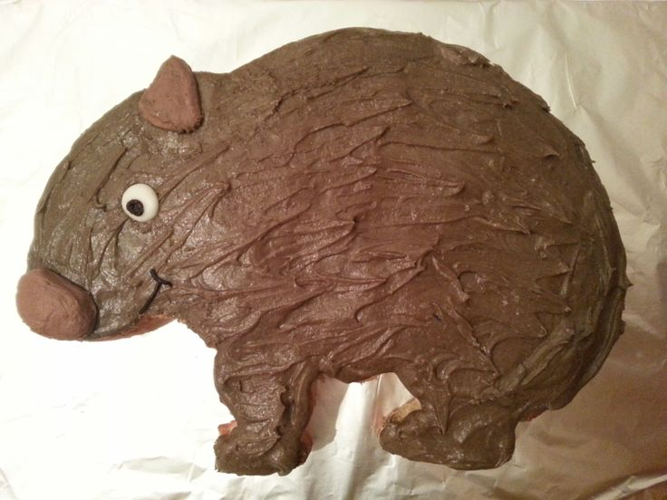 A wombat cake for a friend's birthday.