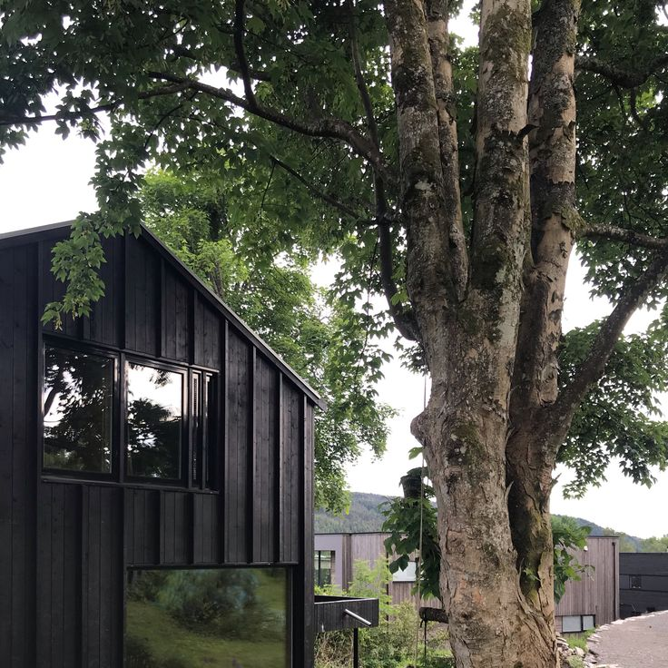 Bela fachada de madeira pela arquitetura Kvalbein Korsøen (Søre Titlestad Eneboli …   – Träpanel
