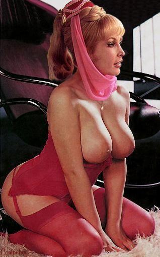 Barbara eden fake porn