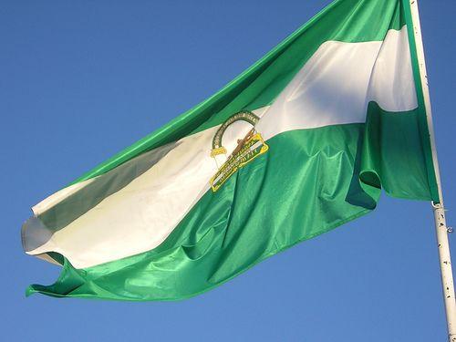 Nuestra #LuzConHistoria es hoy la bandera de nuestra comunidad.