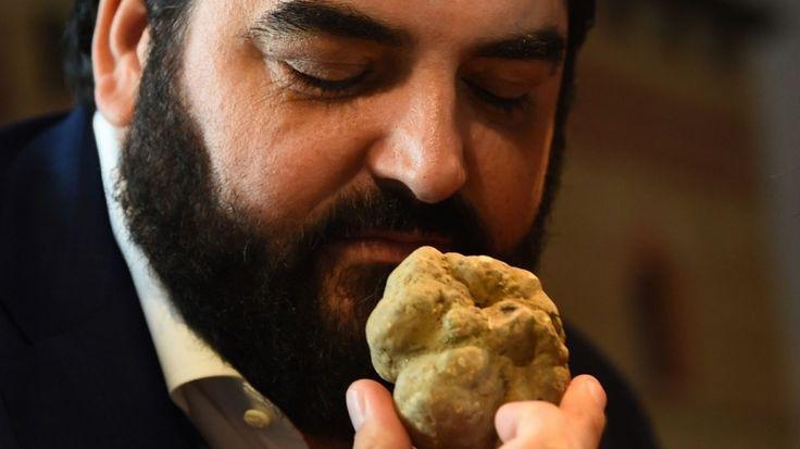 Italian chef Antonino Cannavacciuolo smells a white truffle at the World Alba White Truffle Auction. Photo: AFP/ MARCO BERTORELLO