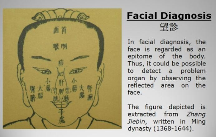 Tcm Facial Diagnosis 89