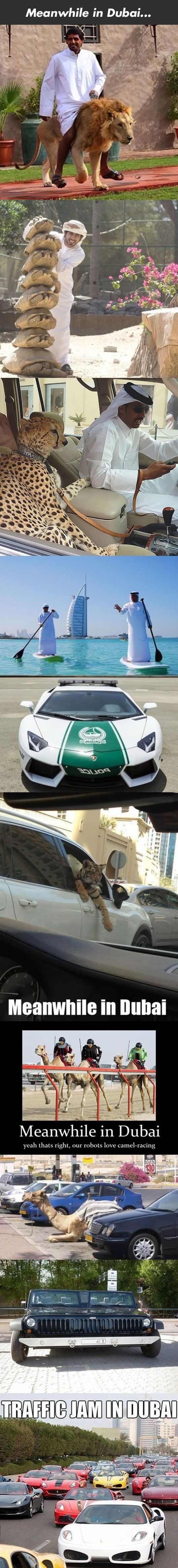 Funny Meanshile in Dubai