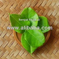 Specifications  Kaffir lime leaf Dried kaffir lime leaf Herbal Tea & Cold Beverage Desserts and Baking Natural food colouring