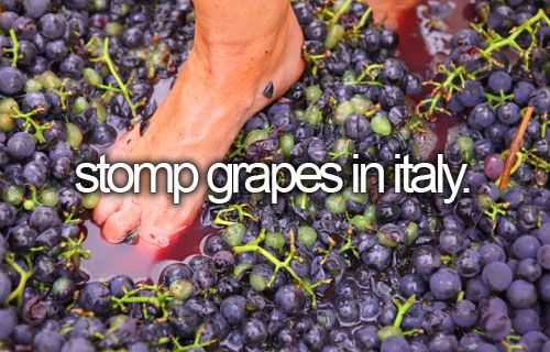 """""""Stomp grapes in Italy"""": Ever since that one I Love Lucy episode, I've wanted to do this..."""