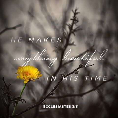 Ecclesiastes 3:11 (NIV1984) He has made everything beautiful in its time. He also set eternity in the hearts of men; yet they cannot fathom what God has done from the beginning to end.