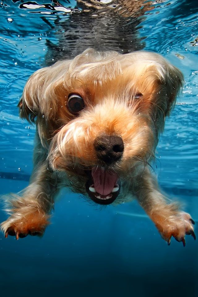I'm swimmin' mom!!