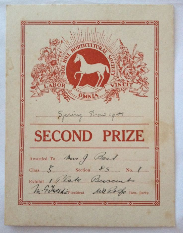 Vintage prize card. Box Hill Show 1941.
