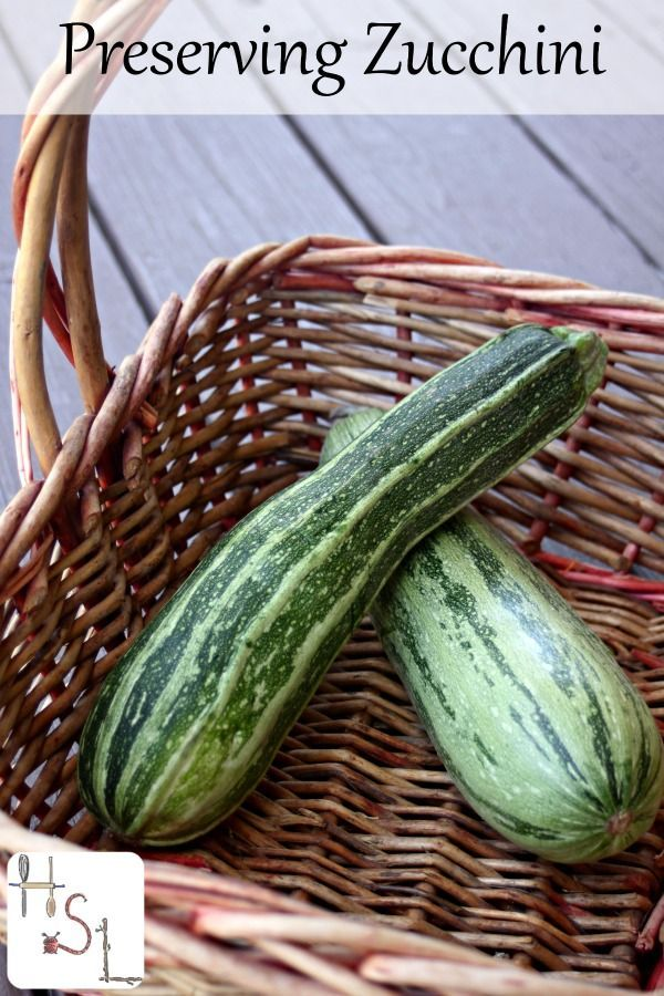 Two simple ways for preserving zucchini for winter use: dehydration and freezing. Simple now but allows for creative cooking later.