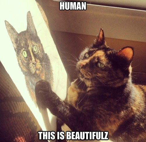 Selina, this reminded me of you the second I saw it!  A tortishell cat, like our Selina, admiring your drawing of a cat!  Talk about connecting..XO