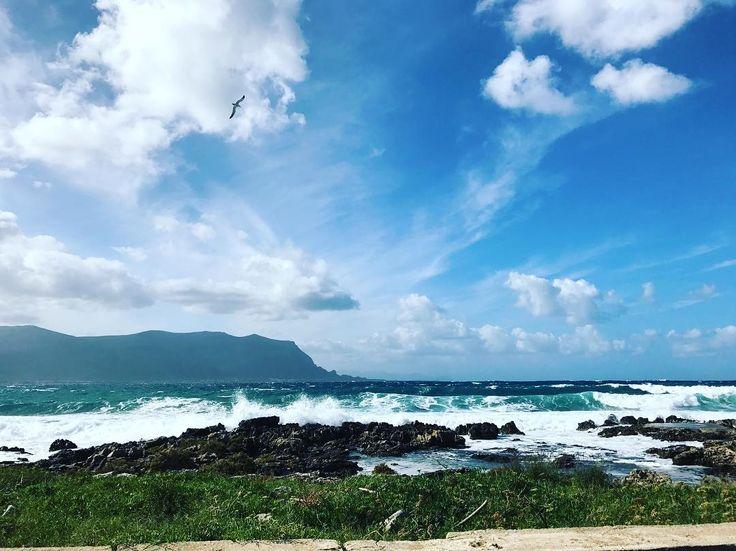 Wavy Day, Amazing though! It is never too cold for Sicily #weather #sun #waves #sea #wanderlust #ig_trinacria #sicilialovers #sicilianinsta #sicilianjourney #whatsicilyis #sicily #travel @michidipp www.grandtourglobe.com