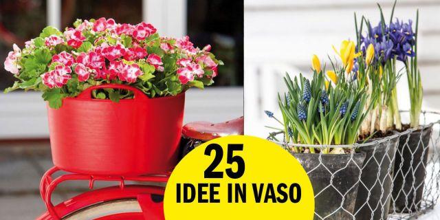 17 migliori idee su vasi per fiori su pinterest for Migliori piani casa ranch artigiano
