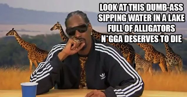 "Snoop Dogg Narrates Planet Earth Like A True O.G. ""That's it, you dead cuz!"""