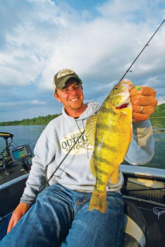 Spring into summer perch fishing panfish pinterest for Yellow perch fishing secrets