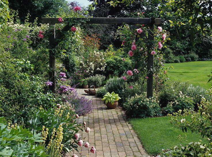 natuurlijk pergola met rozen