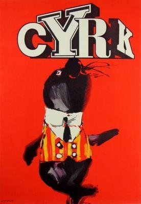 Cyrk - Foka, Circus - Seal, Swierzy Waldemar