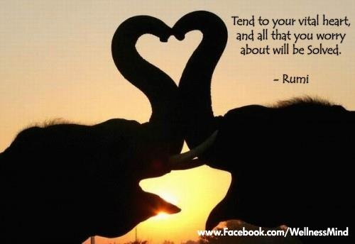Tend to your vital heart, and all that you worry about will be solved. - Rumi