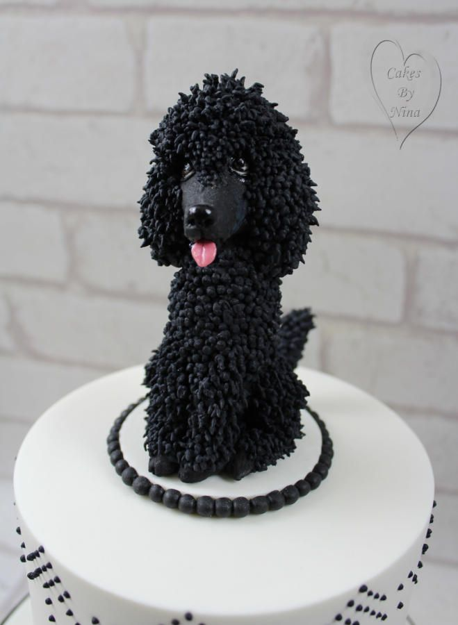 Terrific Poodle Cake Cake By Nina Cakesdecor With Images Fondant Funny Birthday Cards Online Aeocydamsfinfo
