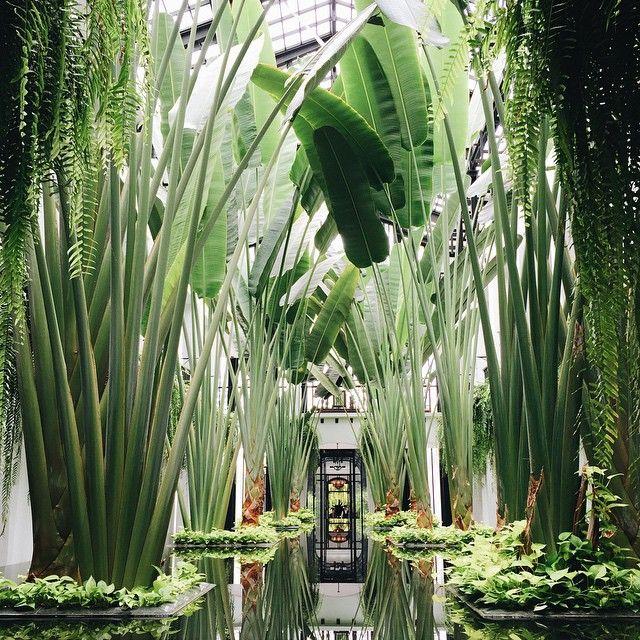 The Siam Hotel, Bangkok